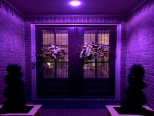 purple light on front porch meaning