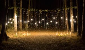 50 ft outdoor string lights
